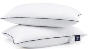 Best pillow for back sleepers