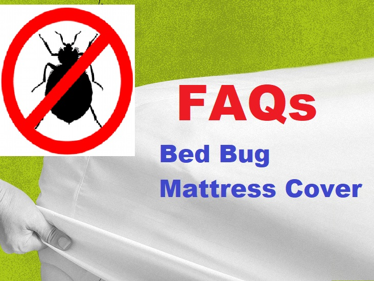 where to buy bed bug mattress cover