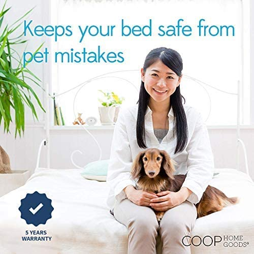 Protect mattress from pet mistakes.